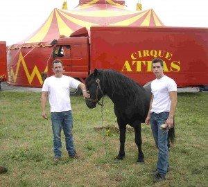 Le cirque Atlas à Audresselles: mercredi 1er août à 18h dans art Marc-et-Jason-Dassonneville-300x270